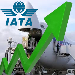 <p>IATA is an international trade body, created over 60 years ago by a group of airlines. Today, IATA represents some 230 airlines comprising 93% of scheduled international air traffic.</p>